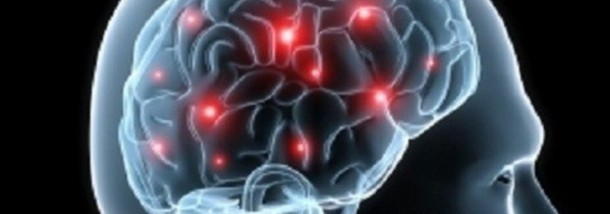 Researchers-question-fructose-s-role-in-obesity-and-brain-functioning_strict_xxl